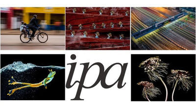"""IPA Announces Winners of One-Shot """"MOVEMENT"""" Photography Competition"""