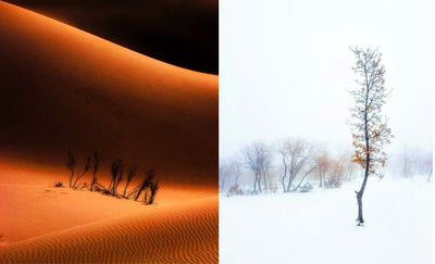 Iranian photographers honored at Global Photographic Union contest