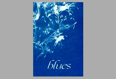Blue photographs of two Iranian artists were displayed in Belgium