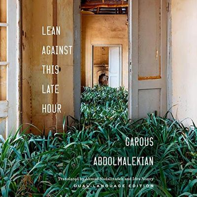 "English translation of ""Lean against This Late Hour"" shortlisted for PEN America Literary Award"