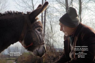 """""""Cinema Donkey"""" crowned best at Spanish comedy film festival"""